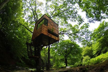 85 Incredibly Cool Tree Houses That Will Have You Dreaming Of A Forest Getaway