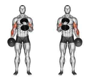 20 Exercises That Melt Upper Arm Fat Fast