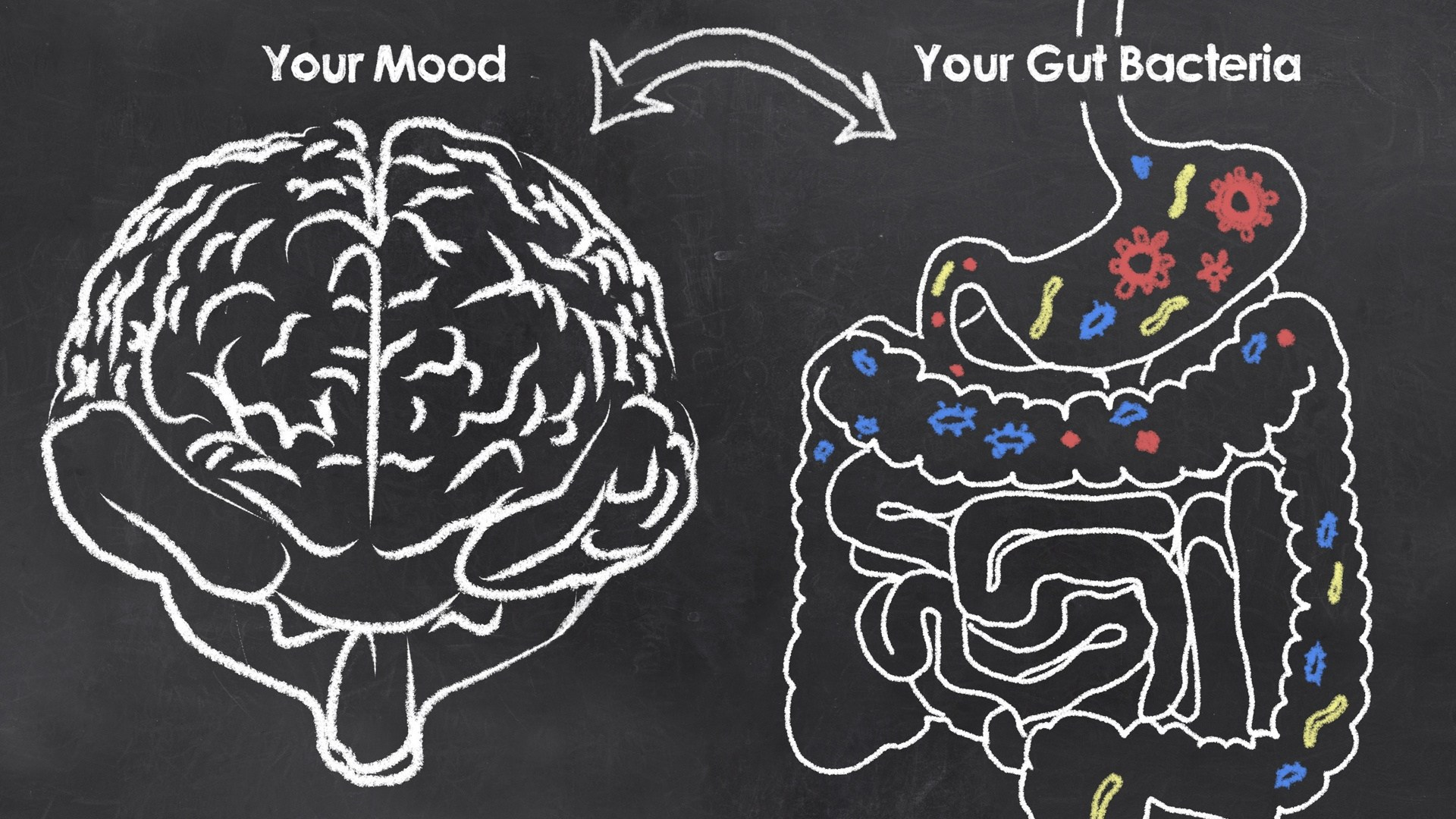 Understanding the Microbiome: How Gut Health Affects Your Health, Weight Loss, and Mood