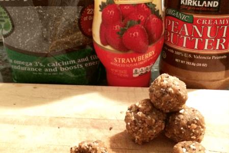 PB&J Protein Snack Balls