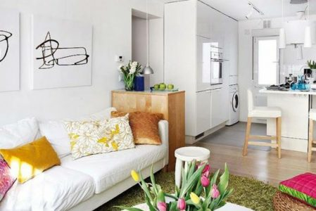 83 Photos With Ideas on How to Decorate a Living Room or Studio Flat