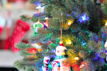 Christmas Holiday Safety Tips For Your Family